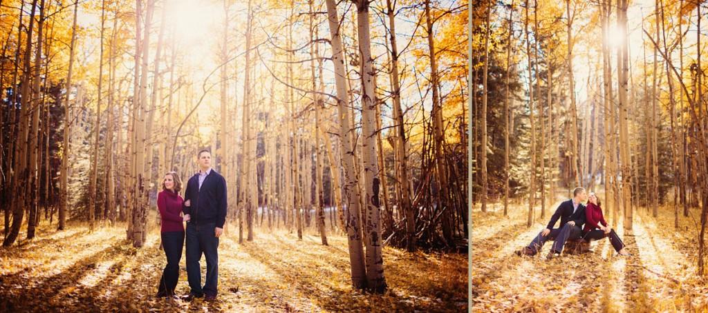 Meyer Ranch Park Engagement Photos