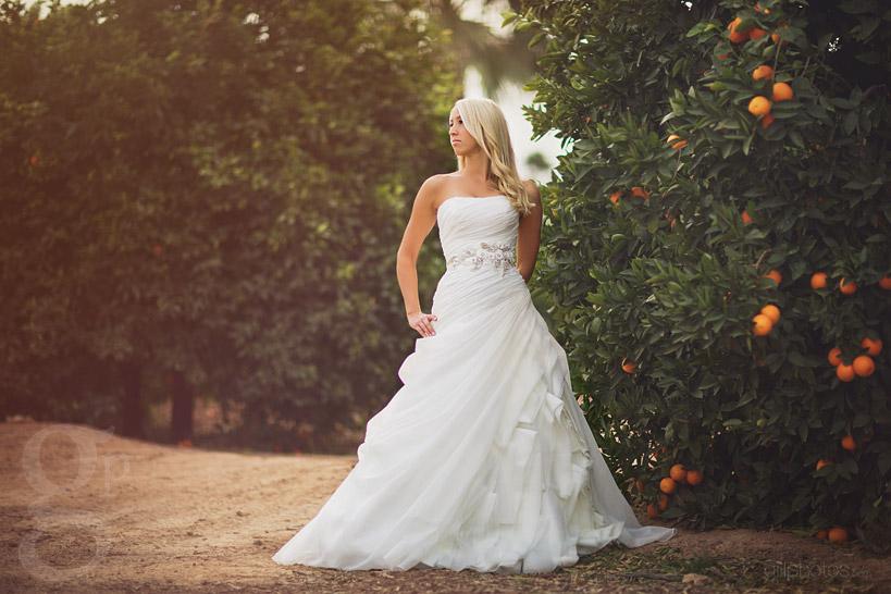 Bride in Orange Grove in Mesa, AZ