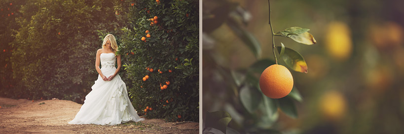 Bridal Session with Oranges in Mesa, AZ