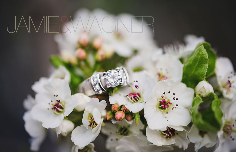 Golden-Engagement-Photo-1