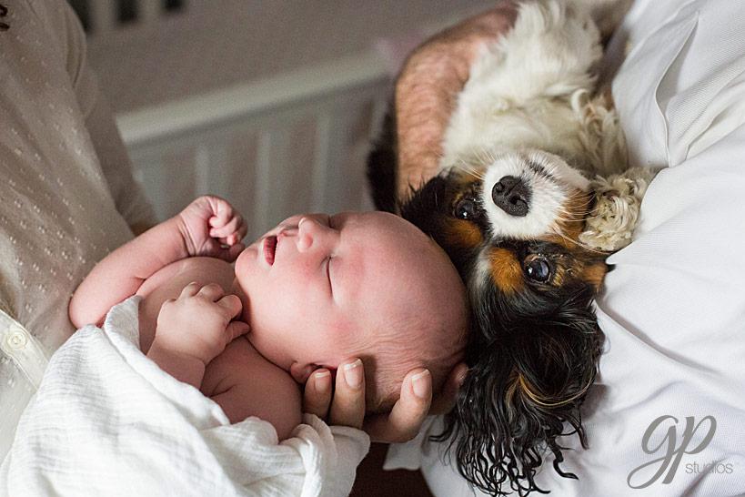 Denver-Newborn-Photographer-14