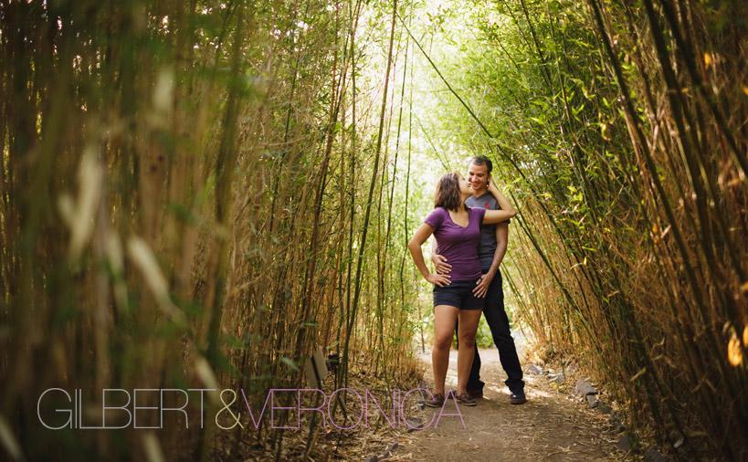 Denver-Botanic-Gardens-Engagement-Photo-1