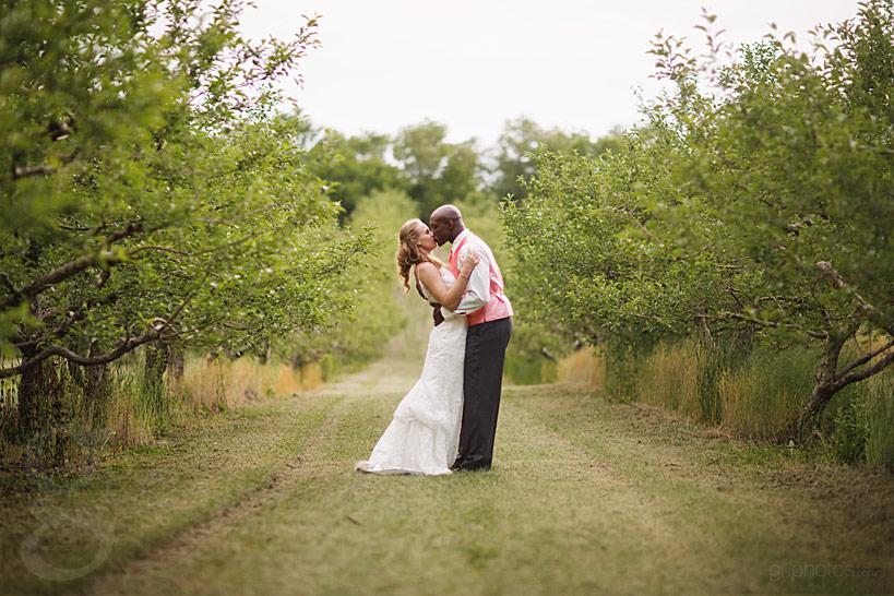 minnetonka_orchard_wedding-46