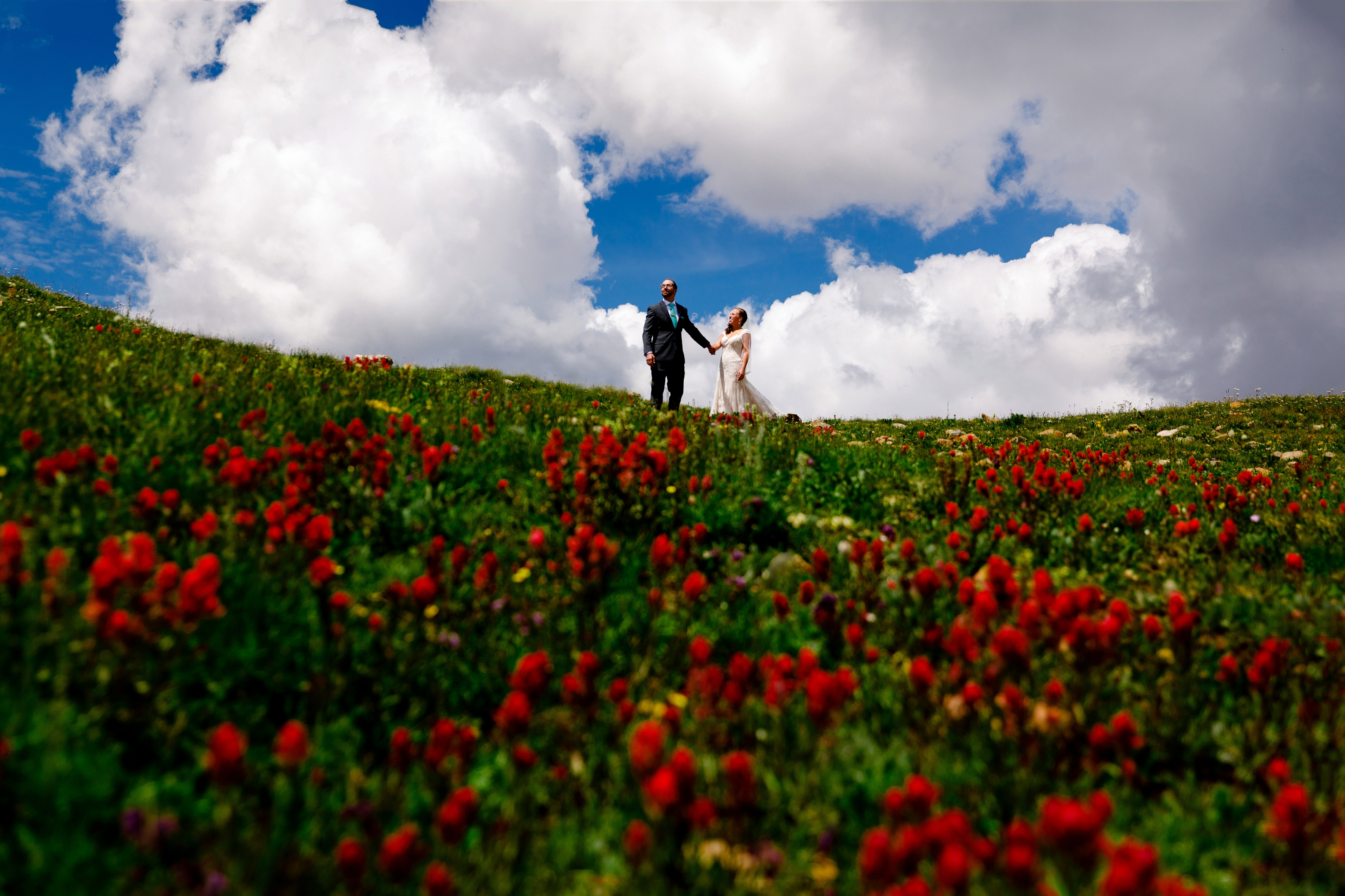 Loveland Pass wedding photo of beautiful wild flowers.
